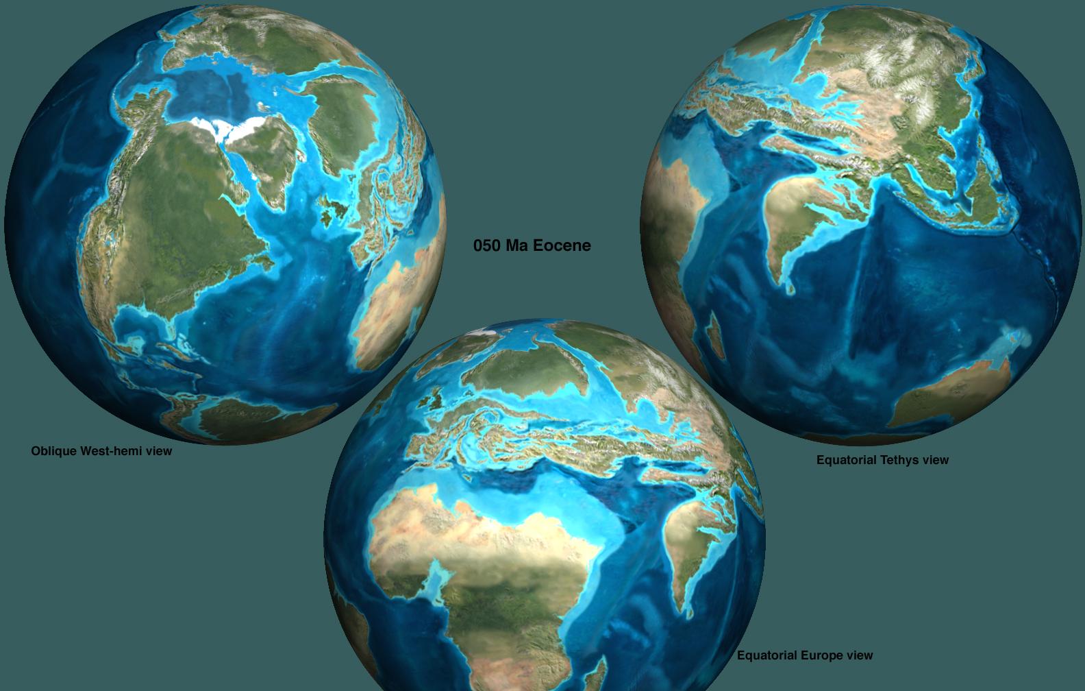 Eocene  Explained!