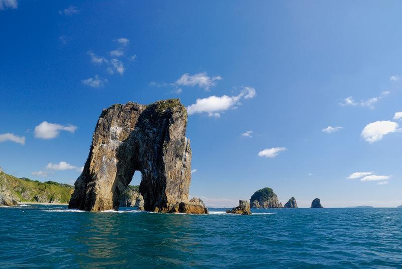 дальневосточный морской заповедник двгмз владивосток каникулы предоставляются малому