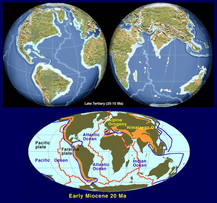 Miocene World Map.Paleogeographic Globes And Mollewide 1st Order Tectonic Globes
